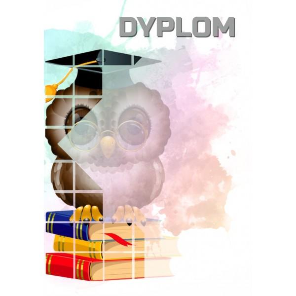 Diploms 157