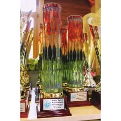 Stikla Kausi ar gravējumu