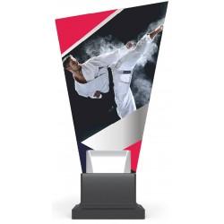Trofeja CP01/KAR