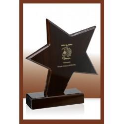 Trofeja 166-01