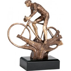 Trofeja RTYR3607